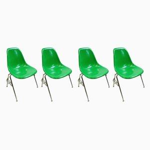 Sedie da pranzo DSS in fibra di vetro e cromata di Charles & Ray Eames per Herman Miller, anni '70, set di 4