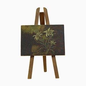 19th Century Miniature Oil on Board Painting of Edelweiss