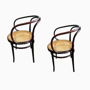 Chaises de Salon Style Thonet en Jonc et Bois Courbé, 1960s, Set de 2