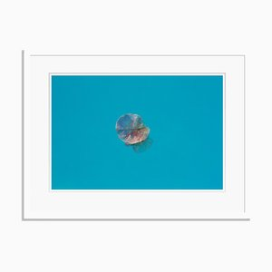 Istan Petal Oversize Archival Pigment Print Framed in White by Stuart Möller