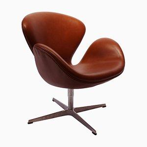 Walnuss Swan Modell 3320 Stuhl von Arne Jacobsen für Fritz Hansen, 2015