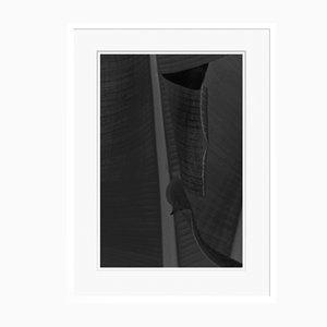 Schwarzer Leaf Oversize Pigment Druck Im Archiv Eingelassen von Stuart Möller