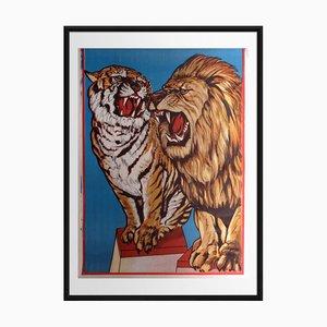 Circus Lion | Eastern Europe | 1972