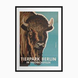 Tierpark Berlin   East Germany   1956