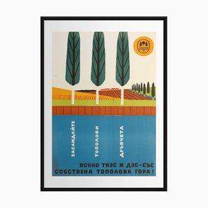 Plantez Plus d'Arbres | Bulgarie | 1961