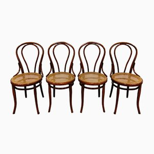No. 14 Dining Chairs by Michael Thonet for Jacob & Josef Kohn, 1930s, Set of 4