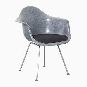 Anthrazitgrauer Blauer DAX Stuhl von Charles & Ray Eames für Herman Miller, 1950er
