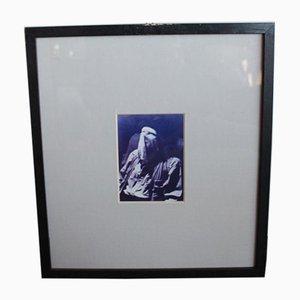 Postal de artista enmarcada de Joseph Beuys, años 80