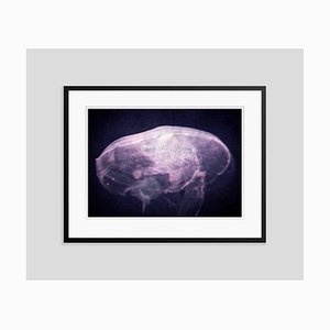 The Dreaming Oversize Archival Pigment Print Framed in Black by Stuart Möller