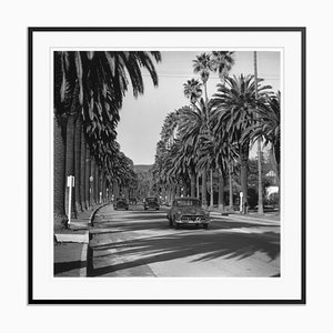 Cannon Drive Silver Fibre Gelatin Print Framed in Black by Slim Aarons