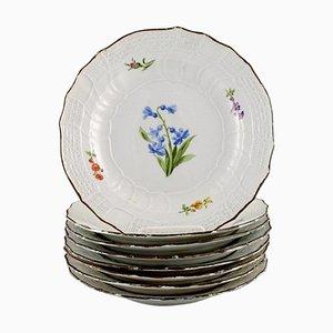Antike Meissen Teller aus handbemaltem Porzellan mit floralen Motiven, 8er Set