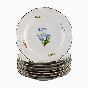 Antique Meissen Plates in Hand-Painted Porcelain with Floral Motifs, Set of 8