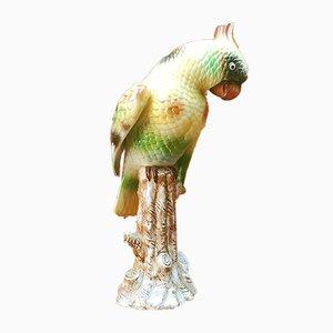 Polychromer Italienischer Mid-Century Keramik Papagei, 1960er