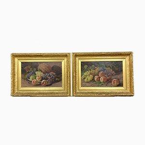 Große Antike Stillleben Gemälde, 2er Set