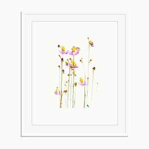 Stampa untitled 02 di White Color Oversize Archival Pigment Print Framed in White di Fleur Olby