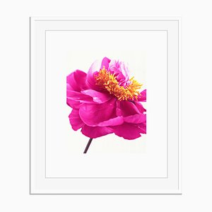 Stampa untitled 04 di White Color Oversize Archival Pigment Print Framed in White di Fleur Olby