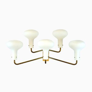 Mid-Century LP12A Galleria Sconces by Ignazio Gardella for Azucena, 1959, Set of 5