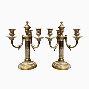Bronze Candleholders with 4 Arms, Set of 2