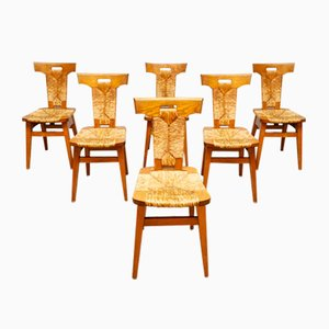 Mid-Century Dining Chairs by Pierre Chapo, 1950s, Set of 6