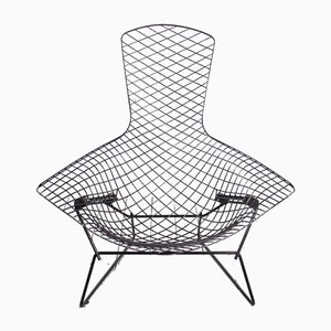 Poltrona Bird Mid-Century di Harry Bertoia per Knoll Inc. / Knoll International