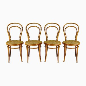 Antique No. 14 Dining Chairs by Michael Thonet for Thonet GT, 1890s, Set of 4