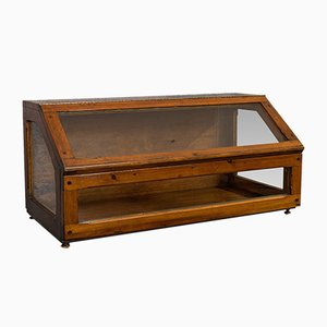 Antique Edwardian Haberdashery Display Case, 1910