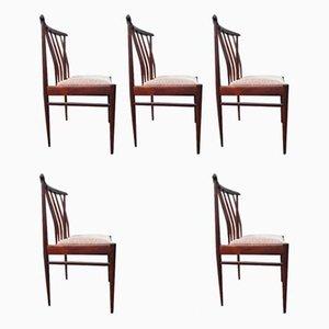 Niederländische Palisander Esszimmerstühle von AWA Meubelfabriek, 1960er, 5er Set