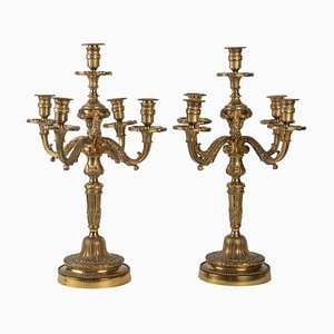 Candélabre à 5 Bras Style Louis XVI en Bronze Doré, Set de 2