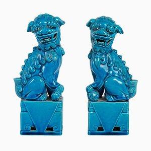 Perrito Fô Dogs, siglo XIX de porcelana azul. Juego de 2