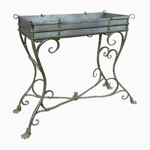 19th Century Iron Planter