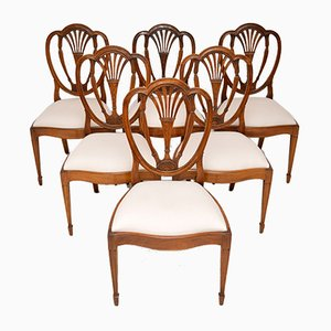 Antique Mahogany Sheraton Style Dining Chairs, Set of 6