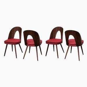 Esszimmerstühle von Antonin Suman für Tatra, 1960er, Set of 4