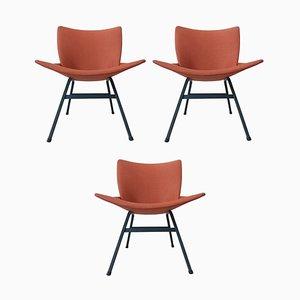Lupina Stühle von Niko Kralj für Stol Kamnik, 1970er, 3er Set