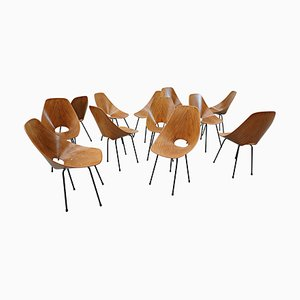 Medea Chairs by Vittorio Nobili, 1950s, Set of 12