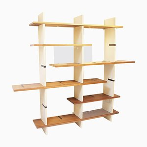 Modulable Bookshelf Model Domino by Eugenio Gerli for Tecno Milano, Italy 1966
