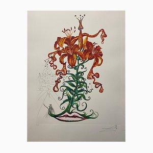 Tiger Lilies and Moustache de Salvador Dali para Edition Graphiques International, 1972