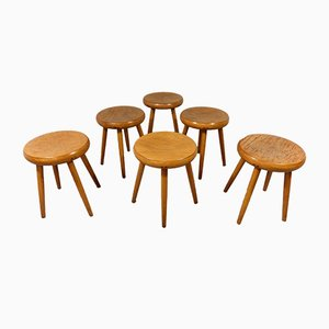 Beech Stools, 1950s, Set of 6
