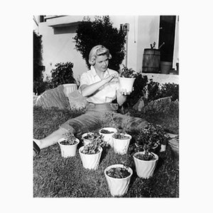 Green Fingered Doris Day Archival Pigment Print Framed in White by Everett Collection