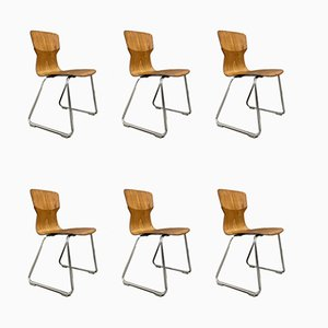 Side Chairs from Casala, 1970s, Set of 6