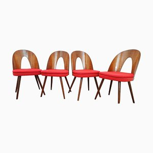 Chaises de Salon Mid-Century par Antonín Šuman, Set de 4