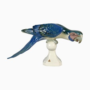 Mid-Century Porcelain Macaw Parrot from Royal Dux, Czechoslovakia, 1960s
