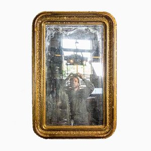 Antique Patinated Mirror in Gold Frame, 1880s