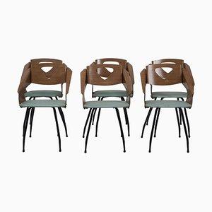 Stühle von Carlo Ratti, 1950er, 6er Set