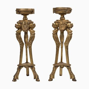 19th Century France Tripods, Set of 2