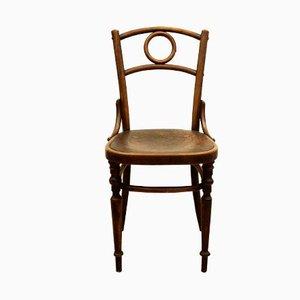 Österreichischer Bugholz Stuhl
