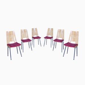 Mid-Century Ash & Velvet Dining Chairs, Set of 6