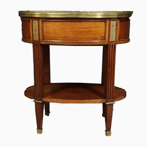 Louis XVI Parisian Mahogany and Bronze Planter