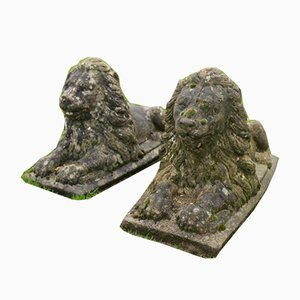 Large Pair of Stone Lions, Set of 2
