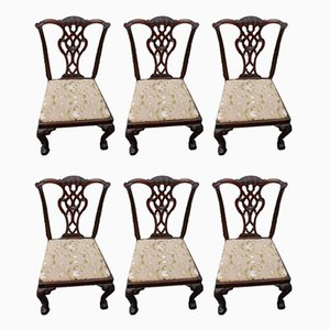 Antique Mahogany Dining Chairs with Pop Out Seats, 1900s, Set of 6