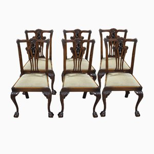 Dining Chairs in Mahogany with Pop Out Seats, 1920s, Set of 6
